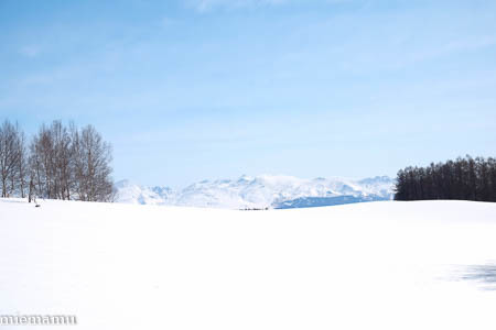 まだまだ、冬の装いの十勝岳連峰~3月の美瑛_d0340565_19483203.jpg