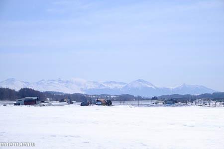 まだまだ、冬の装いの十勝岳連峰~3月の美瑛_d0340565_19484312.jpg