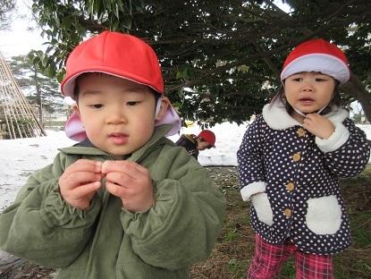 たんぽぽ組高田公園に行きました_c0212598_17570963.jpg