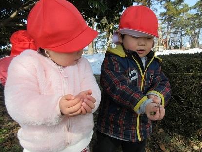 たんぽぽ組高田公園に行きました_c0212598_17570986.jpg