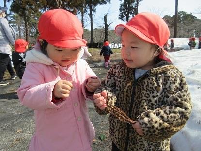 たんぽぽ組高田公園に行きました_c0212598_17571131.jpg