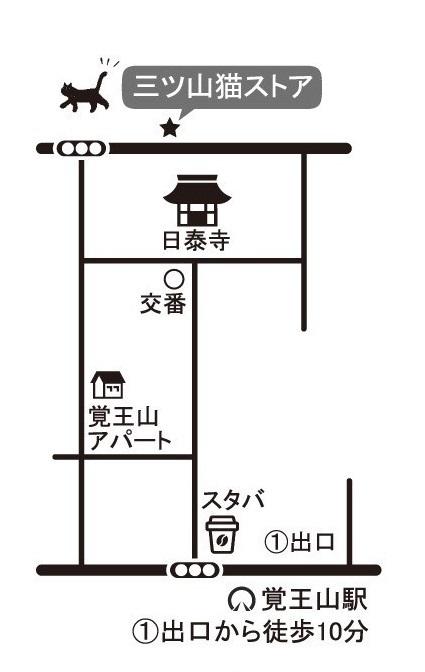 小林綾花さんのワークショップ&作品展のお知らせ_e0305824_10563389.jpg