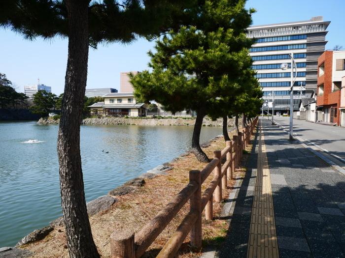 和歌山便り  2021-03-17 00:00 _b0093754_20460765.jpg