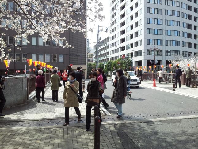 2012/3【春のフォトグラフ】花が咲いたら日記~目黒古桜と目黒川下流のソメイヨシノ_b0116271_15344601.jpg