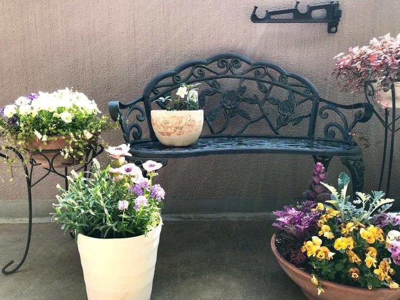 春の庭 目覚めの季節_d0085018_08061505.jpeg