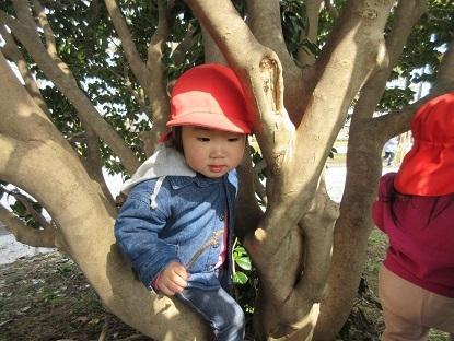 たんぽぽ組高田公園に行きました_c0212598_16073369.jpg