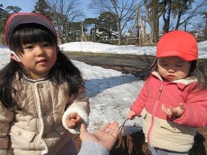 たんぽぽ組高田公園に行きました_c0212598_16142038.jpg