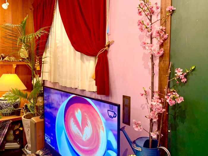 桜咲く_a0037910_17150793.jpg