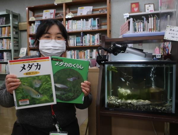 愛媛県立図書館でメダカの学校開校中!_e0197164_17543057.jpg