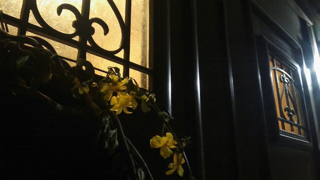 春の彼岸に、生と死のこと***_e0290872_22034242.jpg