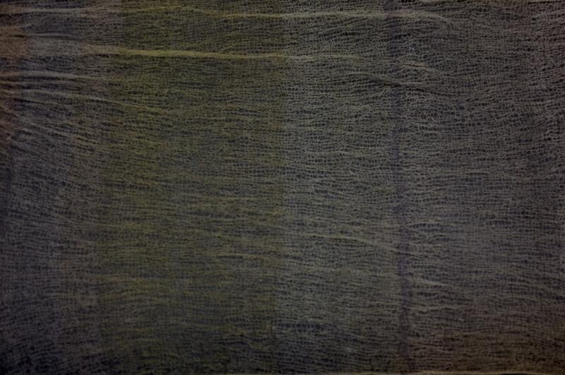 memo ー 森で展示をすること_c0243045_19315234.jpg