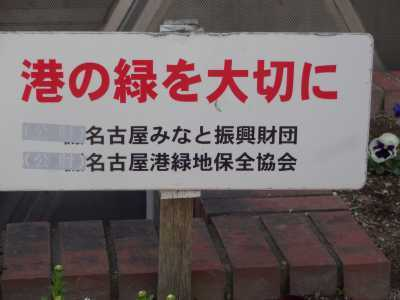 ガーデンふ頭総合案内所前花壇の植替えR3.3.15_d0338682_16580533.jpg