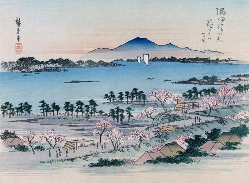 隅田川墨堤の桜風景_a0277742_23073355.jpg