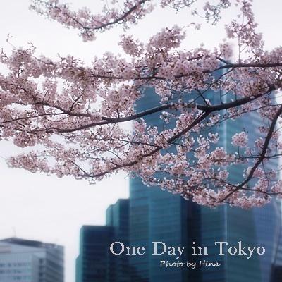 サクラサク、One Day in Tokyo_f0245680_16374232.jpg
