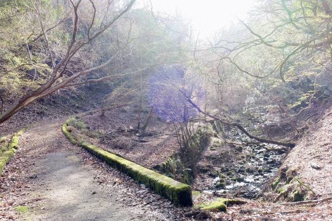 ride & hike 比叡山の横_e0149587_12421511.jpeg