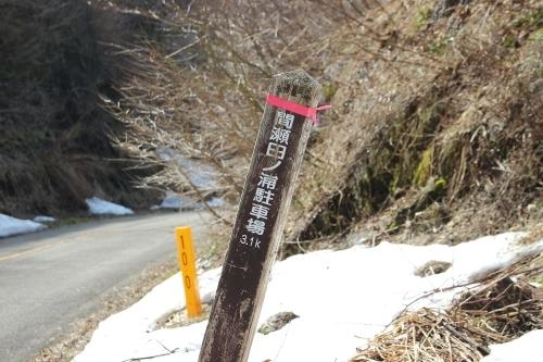 弥彦山 八枚沢~田ノ浦 お花見登山_a0309917_10260158.jpg