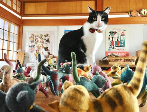 展覧会のお楽しみ。 〜春の展覧会『Yoko-Bon\'s World ! 絵本と猫と人形たちと』より〜_d0077603_11122226.jpg