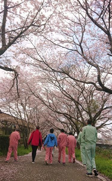 春の訪れ_d0176392_15484012.jpg