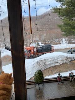 3月22日 月曜日 小雪 2度_f0210811_12063199.jpg