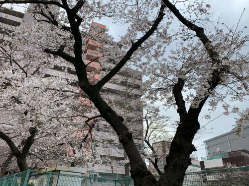 大阪市福島区のやきとり六源です!_d0199623_01200613.jpg