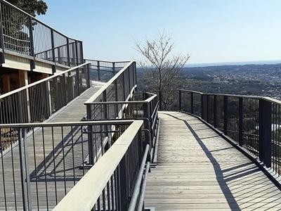 横山展望台と陽光桜_f0129726_15495119.jpg
