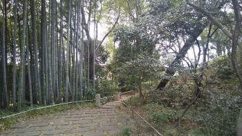 建物探訪 行ってきました♪ 旧白洲邸「武相莊」_c0146040_18474179.jpg