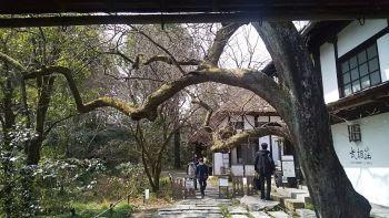 建物探訪 行ってきました♪ 旧白洲邸「武相莊」_c0146040_19133227.jpg