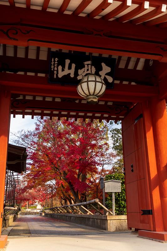 2020紅葉きらめく京都 艶めく参道(乙訓寺)_f0155048_21472469.jpg