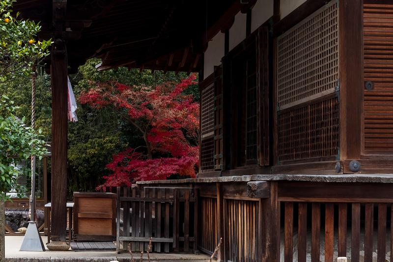 2020紅葉きらめく京都 艶めく参道(乙訓寺)_f0155048_21500510.jpg