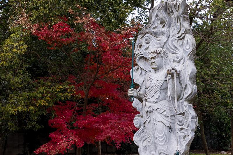 2020紅葉きらめく京都 艶めく参道(乙訓寺)_f0155048_21502028.jpg