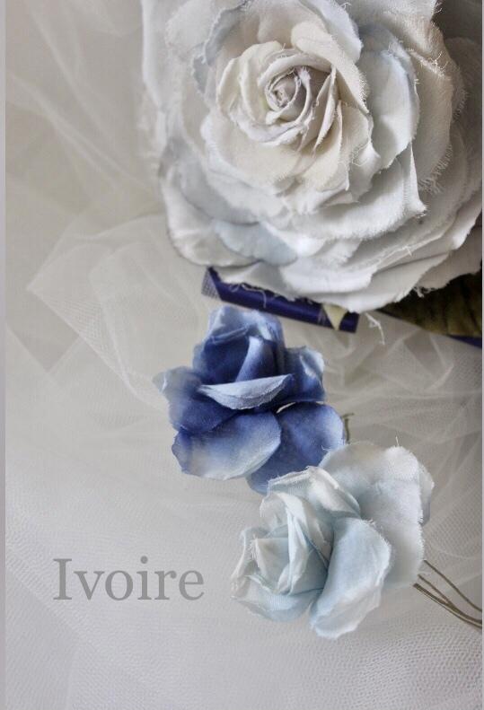 Blue Rose...♪*゚_f0372557_19062163.jpeg