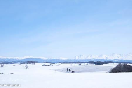 融雪模様の新栄の丘から~3月の美瑛_d0340565_19481731.jpg