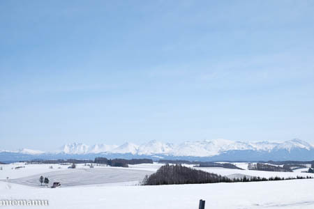 融雪模様の新栄の丘から~3月の美瑛_d0340565_19482458.jpg