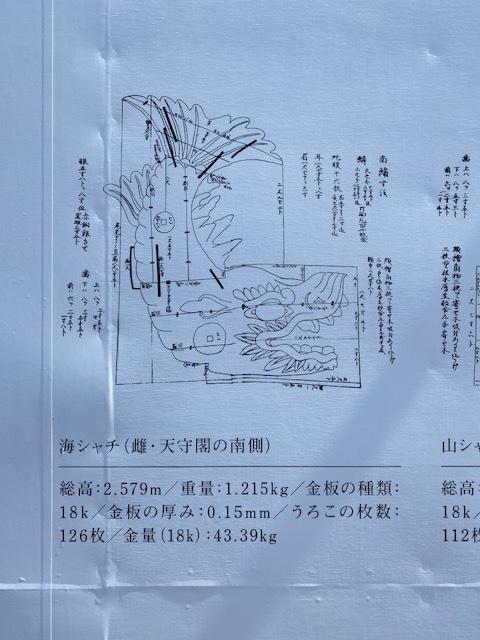 KING SYACHI_c0404676_07103306.jpg
