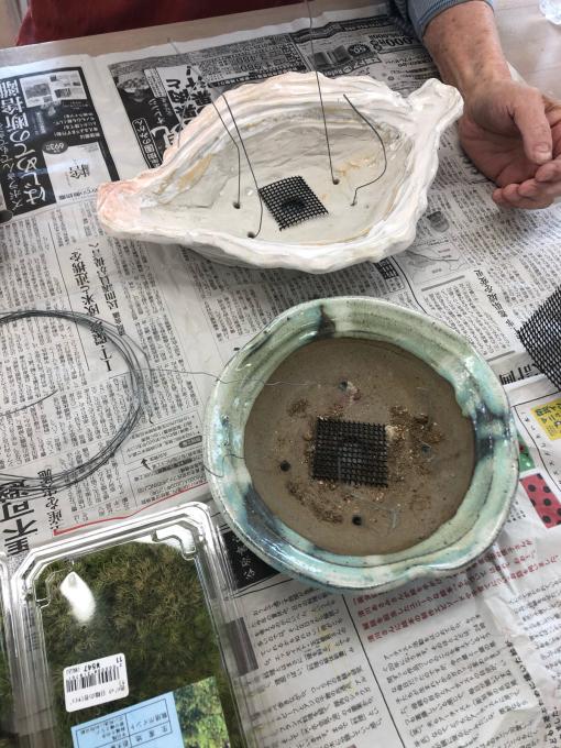 盆栽植え付け_c0298879_23012452.jpg