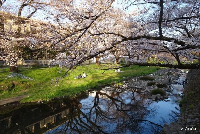 お花見散歩_c0051105_22014276.jpg