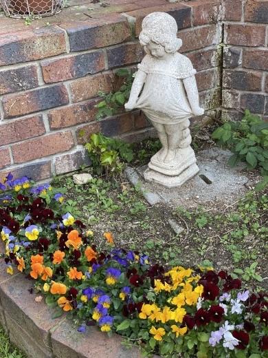 春爛漫のお庭*⃝̣◌︎⑅⃝︎◍︎♡︎◌︎*⃝̥◍︎♡︎_a0213806_12291165.jpeg