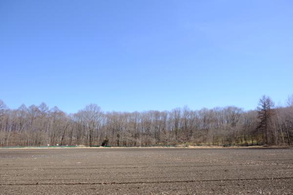 春の陽気と冬じまいの音_b0174425_14335939.jpg