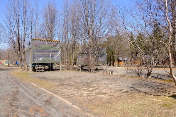 春の陽気と冬じまいの音_b0174425_14491513.jpg