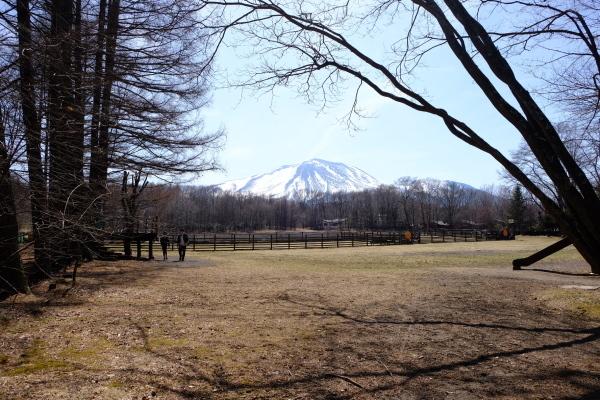 春の陽気と冬じまいの音_b0174425_17264486.jpg