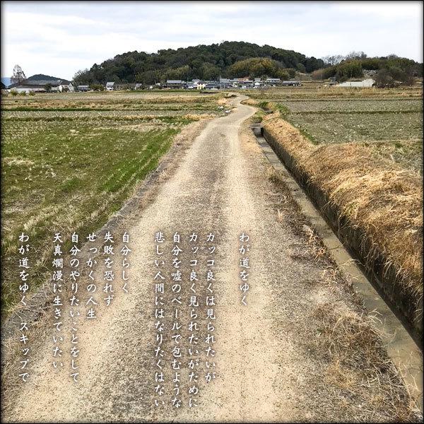 わが道をゆく_a0197968_12531377.jpg