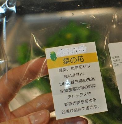 菜の花とチーズと半熟卵_b0129725_16342212.jpg