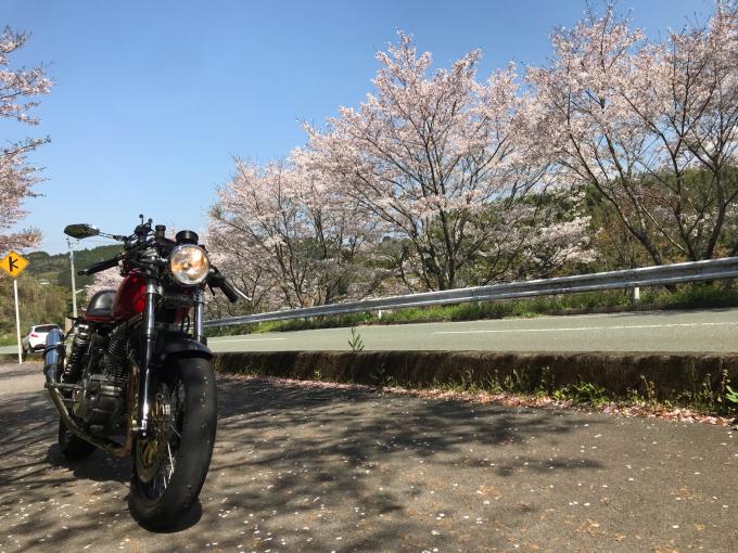 私的ブログ…春が来た!…編^_^。_d0132688_18350646.jpg