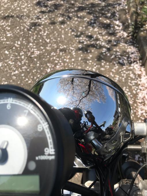 私的ブログ…春が来た!…編^_^。_d0132688_18391399.jpg