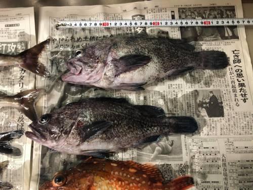 ◆ Fishing ◆_c0078202_09071544.jpg