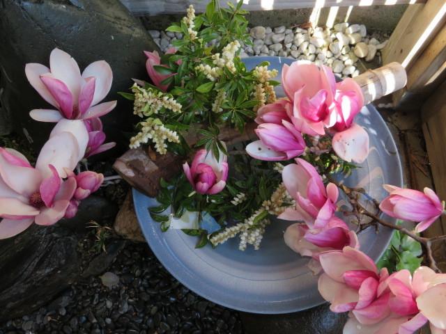 春を飾るモクレンと馬酔木(アセビ)を活ける_f0329849_21333227.jpg