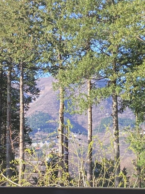 2021年3月26日 今日富士山見たっけ_b0098584_20573849.jpeg