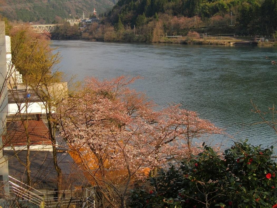 神通峡に訪れし春。_f0281398_21300882.jpg
