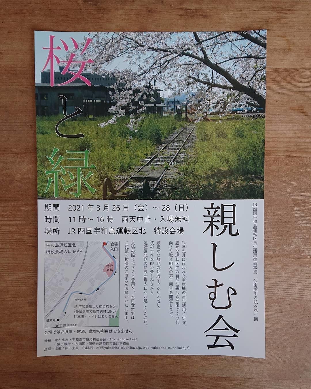 桜と緑 親しむ会_c0172049_14542730.jpg