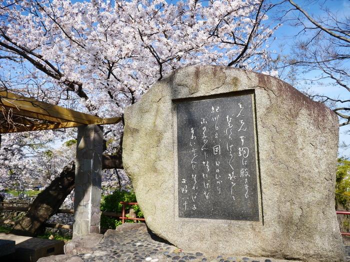 桜満開の和歌山城へ  2021-03-28 00:00 _b0093754_23254049.jpg